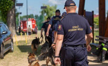 Wspólne szkolenia psów przez służby mundurowe