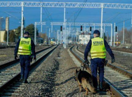Straż Ochrony Kolei weźmie udział w międzynarodowych działaniach Rail Action Week